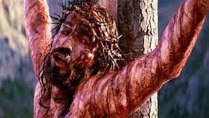 The Curse Of Christ (1/2)