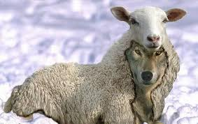 An antichrist may indeed appear as a lamb, but his wickedness is demonstrated in his false teaching.
